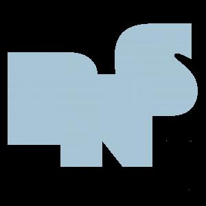 BNS beeldlogo blauw